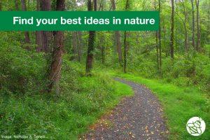 SBQ-Find-Ideas-in-Nature
