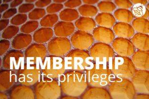 SBQ-Membership-Privileges