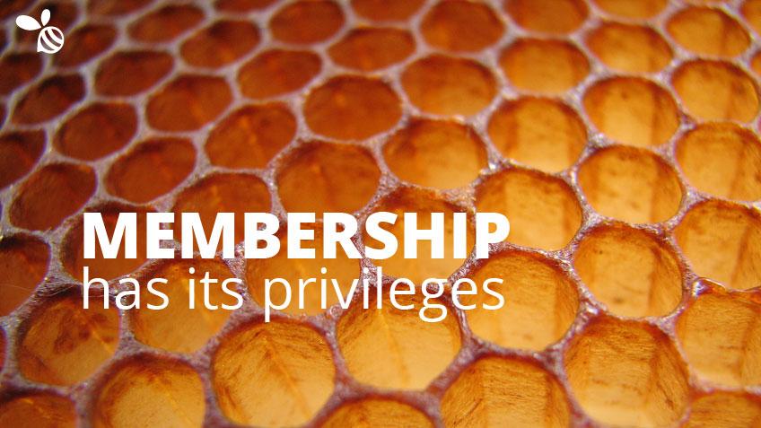 SBQ-Membership-Privileges-Wide