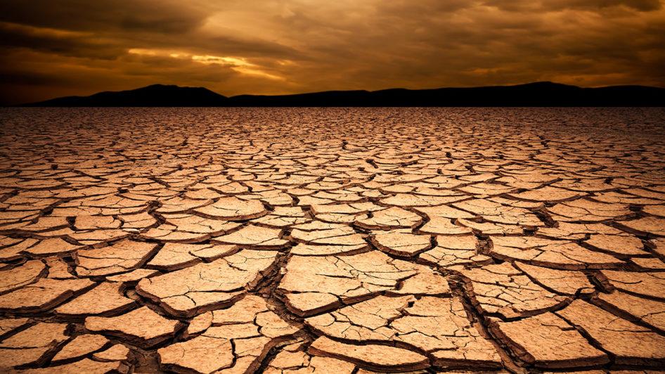 Brand Naming Drought