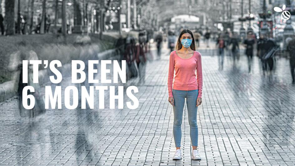 Six Months Ago