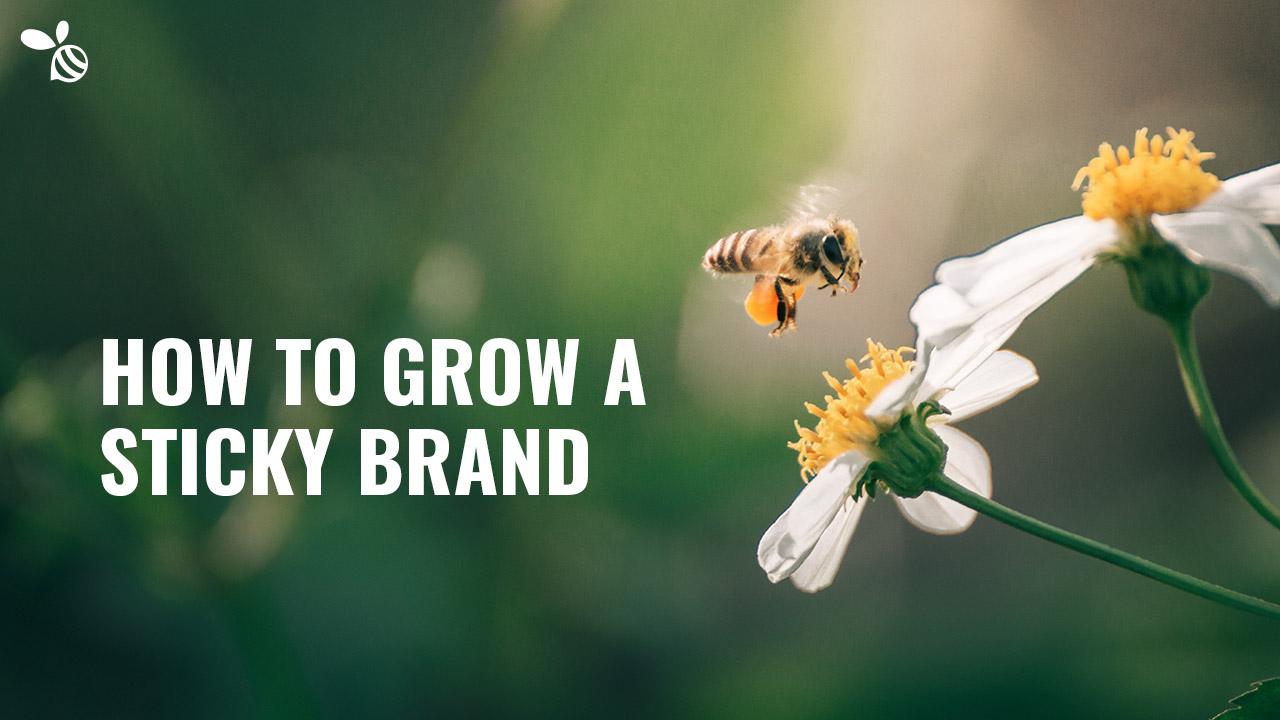 How to Grow a Sticky Brand